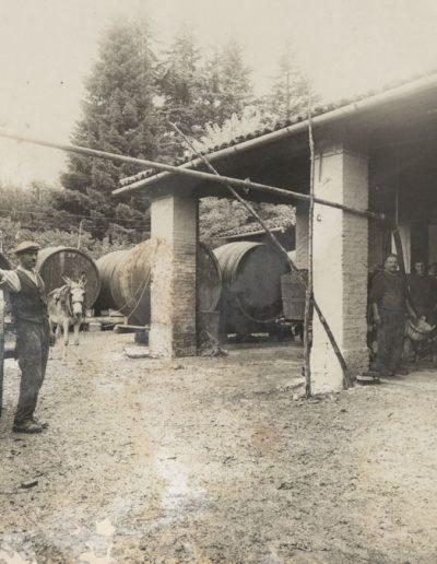 cantina-san-pietro-in-cariano-azienda-storica2