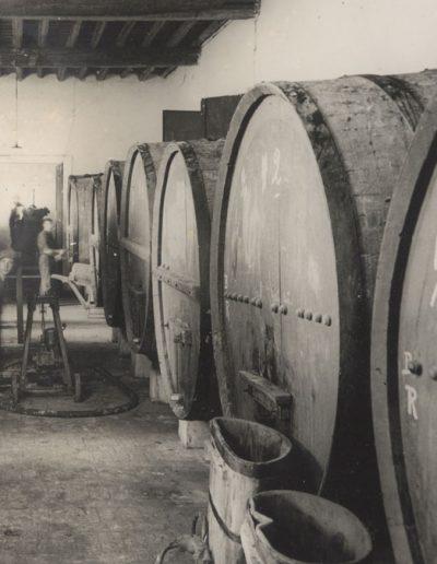 cantina-san-pietro-in-cariano-azienda-storica3